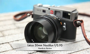 Leica Noctilux f/0.95 Review