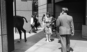 Broadgate_Circle_horse_exhibitionsml
