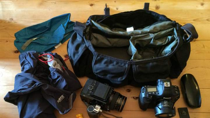 In your bag No: 1431 – Dank Spangle