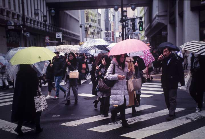 Rainy Day, Shibuya, 2018