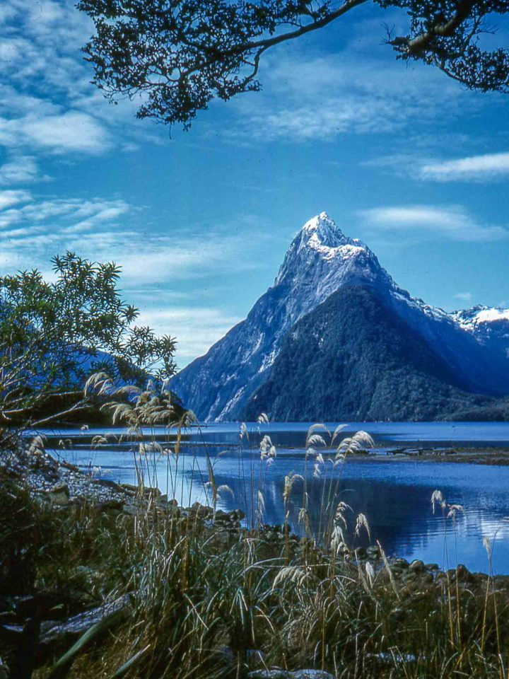 Milford track photographs