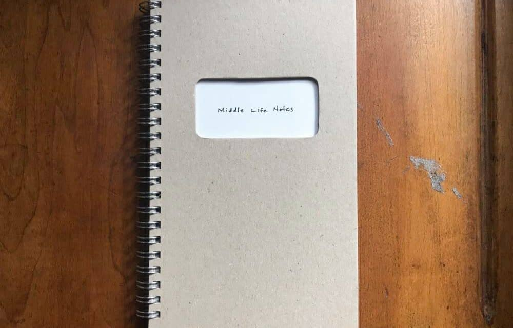 Jesse's Book Review – Middle Life Notes by Sean Lotman